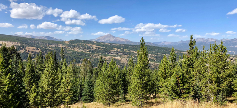 Big Sky Land For Sale
